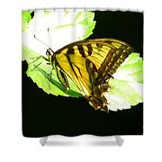 Moment Of Life Shower Curtain