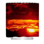 Moment Of Majesty Shower Curtain