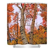 Moments Of Fall Shower Curtain