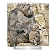 Momma And Baby Gorilla Shower Curtain