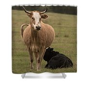 Momma Cow Shower Curtain