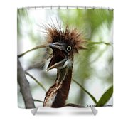 Momma I Am Hungry Shower Curtain