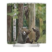 Momma With 4 Bear Cubs Shower Curtain