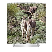 Mommy And Baby Burro Shower Curtain