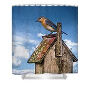 Mommy Time Out Shower Curtain