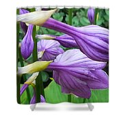 Mom's Garden Shower Curtain