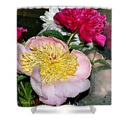 Mom's Peonies Shower Curtain