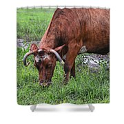 Mona The Cow Shower Curtain