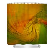 Monarch Abstract Shower Curtain