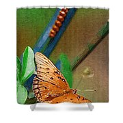 Monarch And Caterpillar Shower Curtain