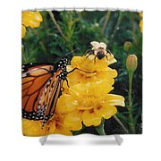 #002 Monarch Bumble Bee Sharing Shower Curtain