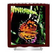 Monarch Butterfly # 2 Shower Curtain