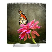 Monarch Butterfly And Pink Zinnia Shower Curtain