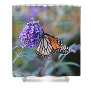Monarch Butterfly And Purple Flowers Shower Curtain