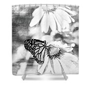Monarch Butterfly Art 2 Shower Curtain