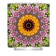 Monarch Butterfly On Milkweed Kaleidoscope Shower Curtain