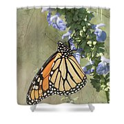 Monarch Butterfly Textured Background Shower Curtain