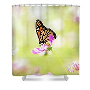 Monarch On Cosmos Shower Curtain