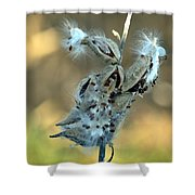 Monarch Seeds Shower Curtain