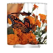 Monarch Series 4 Shower Curtain