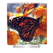 Monarch Series 7 Shower Curtain