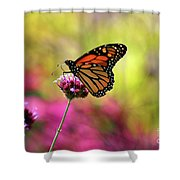 Monarch Song Shower Curtain