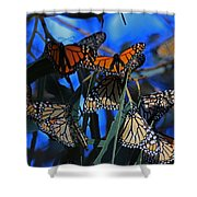 Monarchs In Paradise Shower Curtain