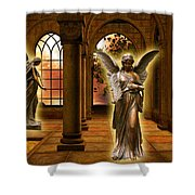 Monastery Angles Shower Curtain