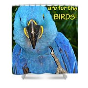 Monday For The Birds Shower Curtain