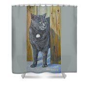 Monet Coming Through Fence Shower Curtain