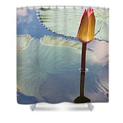 Monet Water Lily Stem Red Orange Shower Curtain