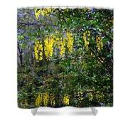 Monet's Garden Abstract II Shower Curtain