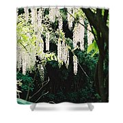 Monet's Garden Delights Shower Curtain
