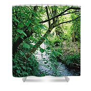 Monet's Garden Stream Shower Curtain