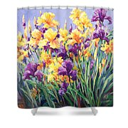 Monet's Iris Garden Shower Curtain