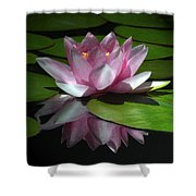 Monet's Muse Shower Curtain