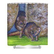 Mongoose #511 Shower Curtain