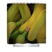 Monkey Food Shower Curtain