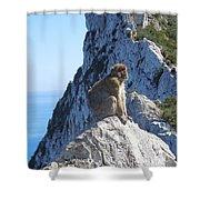Monkey In Gibraltar Shower Curtain
