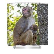 Monkey Mom Shower Curtain