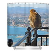 Monkey Overlooking Spain Shower Curtain