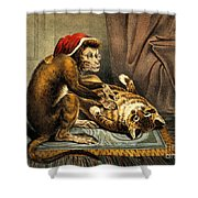 Monkey Physician Examining Cat For Fleas Shower Curtain