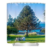 Monkey Puzzle Tree In Central Park In Bariloche-argentina  Shower Curtain