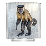 Monkey_0726 Shower Curtain