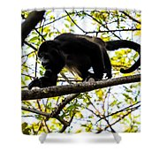 Monkey2 Shower Curtain