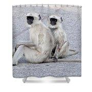 Monkeys Shower Curtain