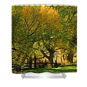 Mono Lake Fall In The Mountains Shower Curtain