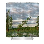 Monopoly Marsh Shower Curtain