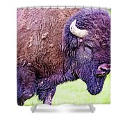 Monster Bison Shower Curtain