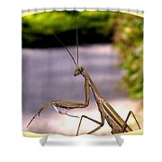 Monster Mantis Shower Curtain